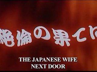 Make an issue of Japanese Wife Next Door (2004)